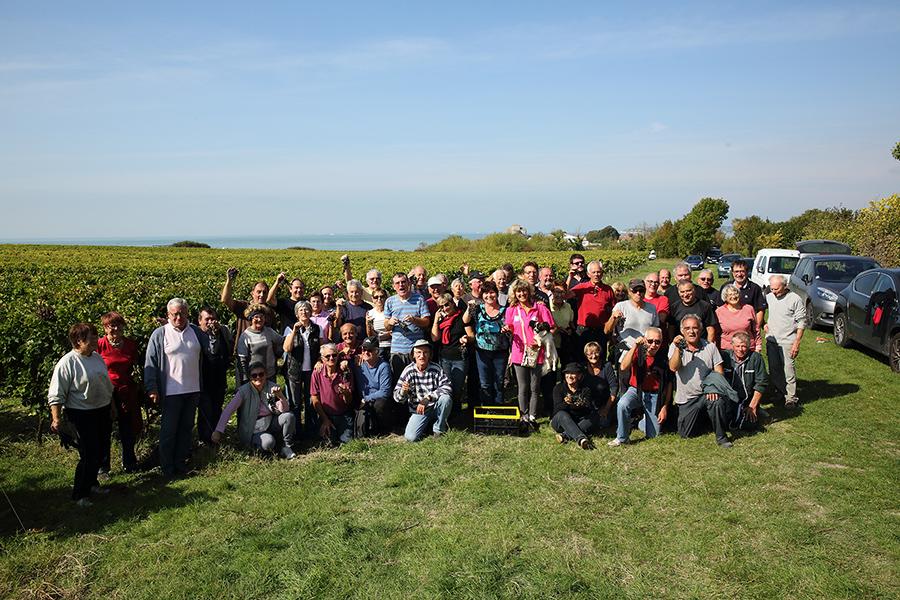 Vendanges 2017 au vignoble des Hauts de Talmont
